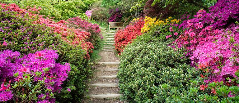 Manito Park and Botanical Gardens